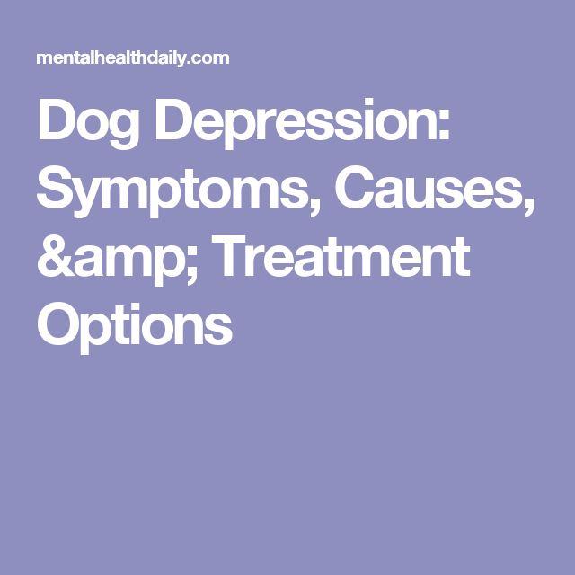 Dog Depression: Symptoms, Causes, & Treatment Options