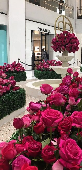 Chanel roses. #Chanel #roses