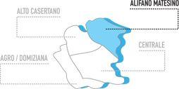 """Anche la Prefettura di Caserta ha preso posizione con un'informativa antimafia sul Consorzio di cooperative sociali """"Icaro"""""""
