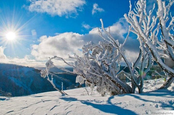 Mt Hotham - Victoria - Australia