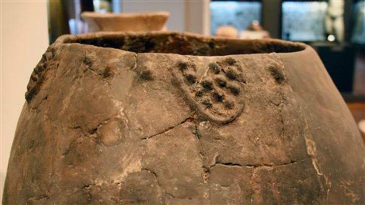 Ανακαλύφθηκε κρασί ηλικίας 8.000 ετών στην Τυφλίδα