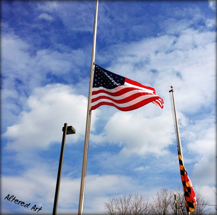 flag veterans day half mast