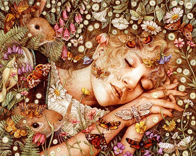 by Yvonne GilbertSleep Beautiful, Wild Swan, Fairies, Anne Yvonne, Mothers Earth, Illustration, Sweets Dreams, Whimsical Art, Yvonne Gilbert