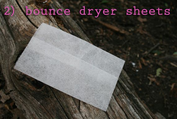 Put bounce dryer sheets in your pockets and in your tent to keep the bugs away