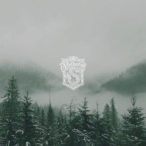 Imagen de slytherin and fog Slytherin aesthetic