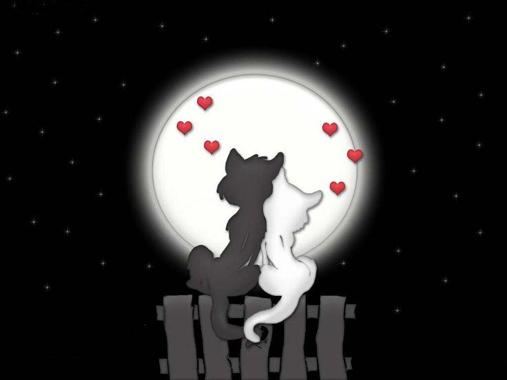 78c2819b9b31ae2ef87551a609b6d012 cat love cat art - Mici innamorati