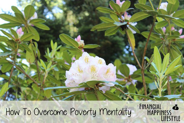How To Overcome Poverty Mentality  #finance #happy #happiness #overcome