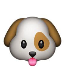 """Résultat de recherche d'images pour """"smiley chien"""""""