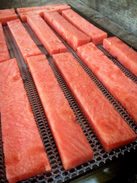 watermelon-leathers. If you d I not have a dehydrator you could do this in a very low oven on a rack over a cookie sheet. Allow for the same amount of time for dehydration.