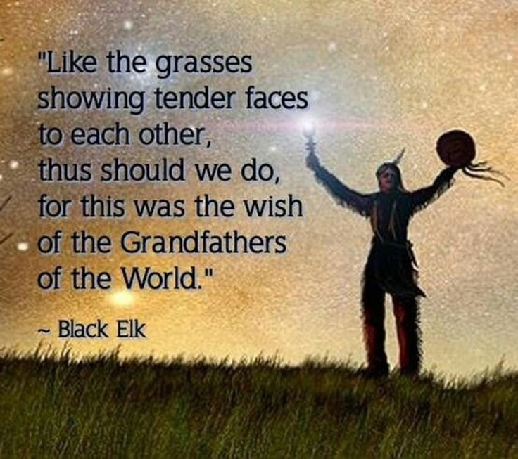 25+ Best Ideas About Native American Wisdom On Pinterest