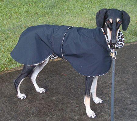 Dog RaiNcoAT - SALuki