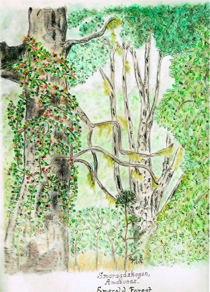 """Smaragdskogen// Emerald forest"""" Colorpencils"""""""