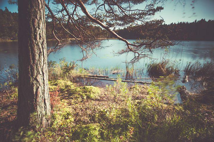 Tyresta National Park | www.edoardomoruzzi.com