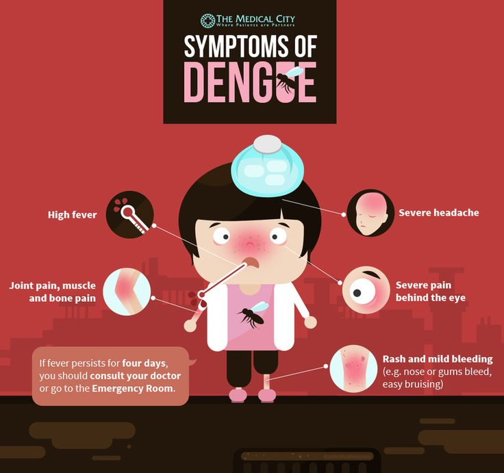 Warning on Dengue: How to Prevent the Spread of Dengue in Your Community