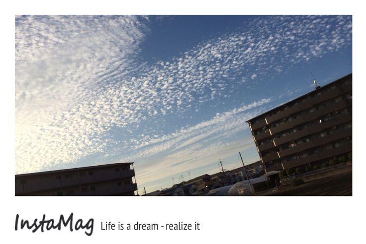 いつかのうろこ雲