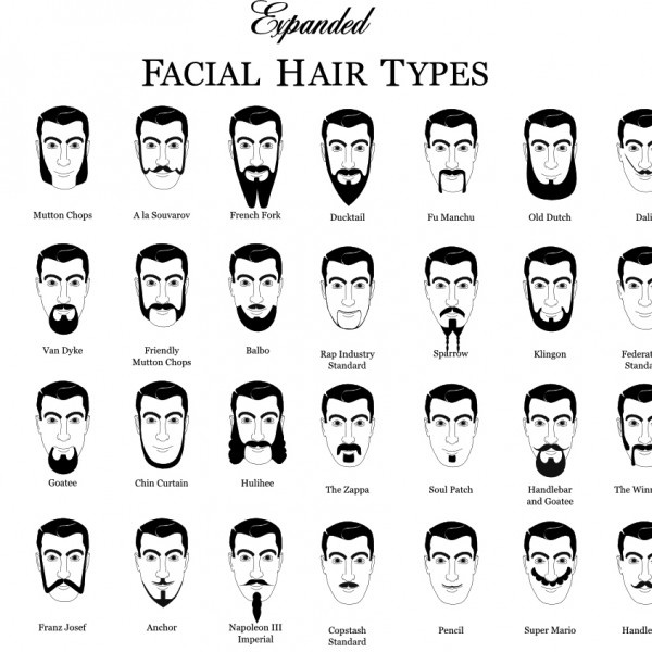 Miraculous 1000 Ideas About Beard Types On Pinterest Mustache Styles The Short Hairstyles For Black Women Fulllsitofus