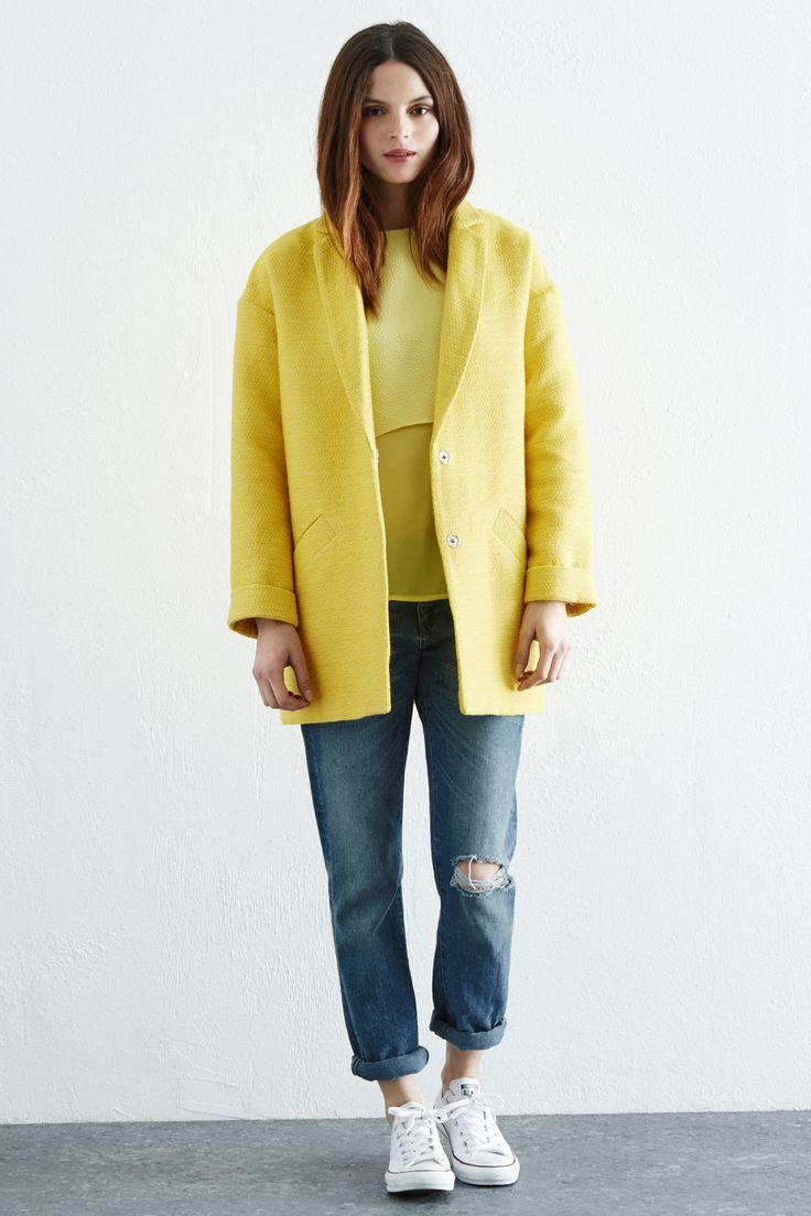 spring-yellow-jacket