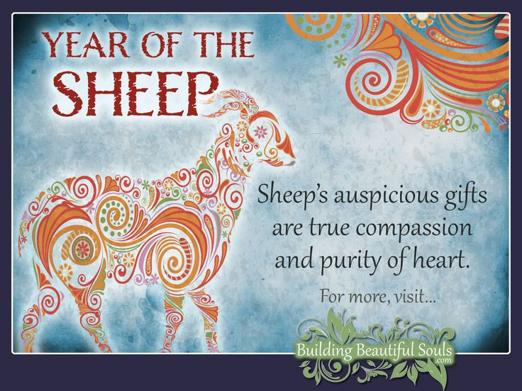 Chinese Zodiac Sheep years are 1955, 1967, 1979, 1991, 2003, 2015, 2027. Get in-depth info on the Year of the Sheep traits & personality!   #sheep #yearofthesheep #chinesezodiac #chinesezodiacsigns #chinesenewyear #horoscope #astrology