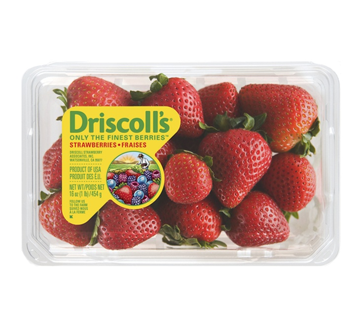 Driscolls Fresh Strawberry Packaging Our Work Food