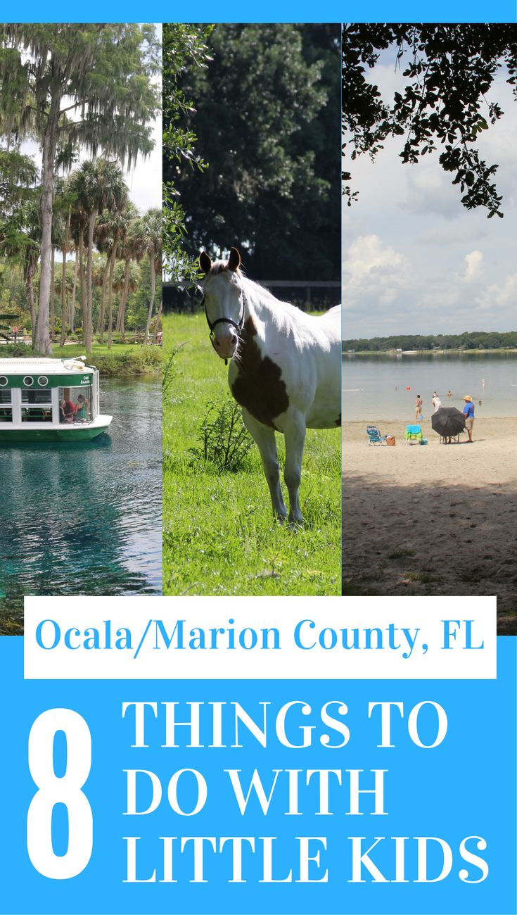 Visit Ocala/Marion County, FL with little kids! Here are 8 great ideas for things to do in the area! #ad