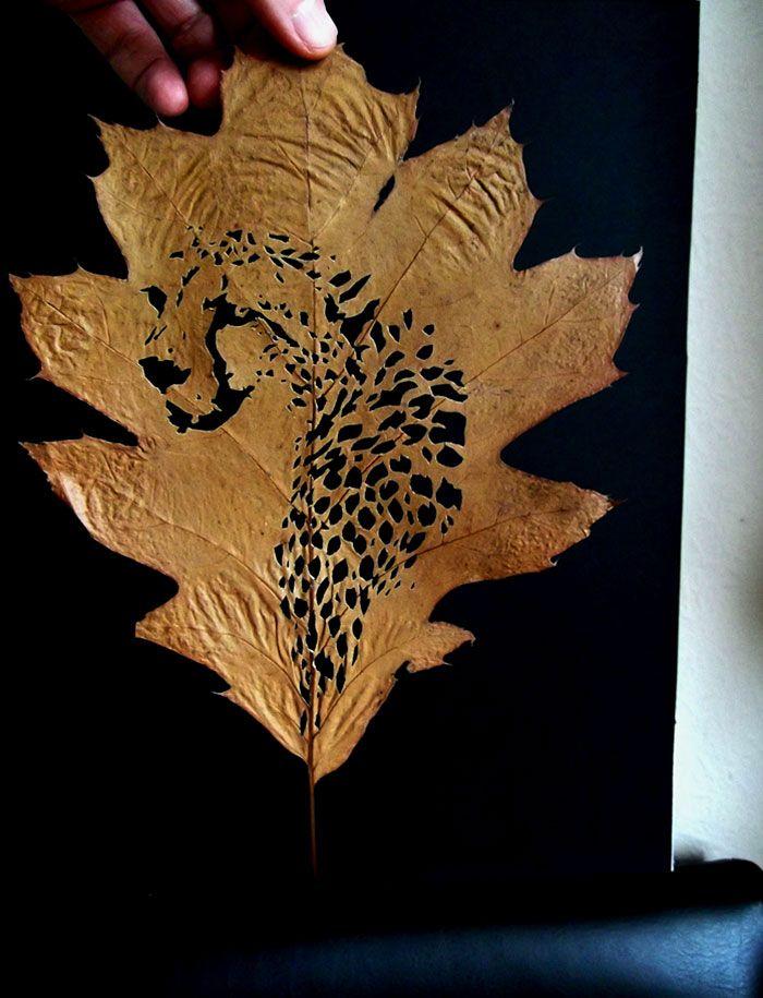 leaf-cutting-omid-asadi-5, #leaf