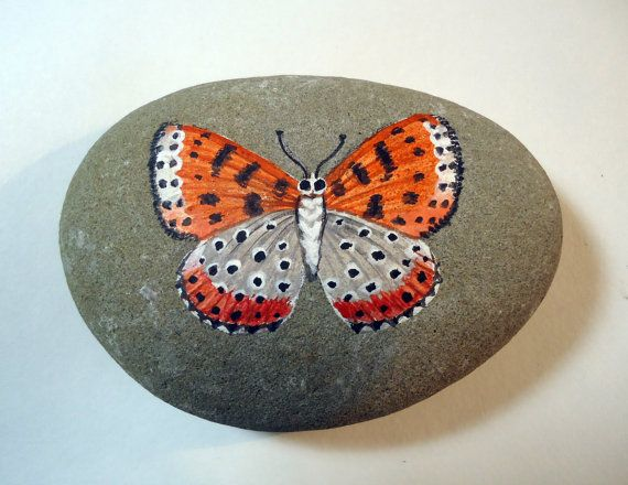 Original realistic orange and black butterfly acrylic miniature painting on pacific ocean beach rock.