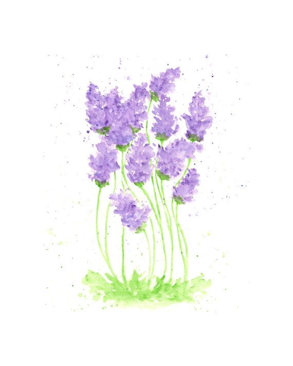 lavender painting - photo #34
