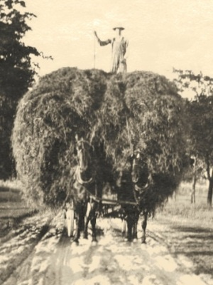 Hauling hay on our farm back in the good old days!