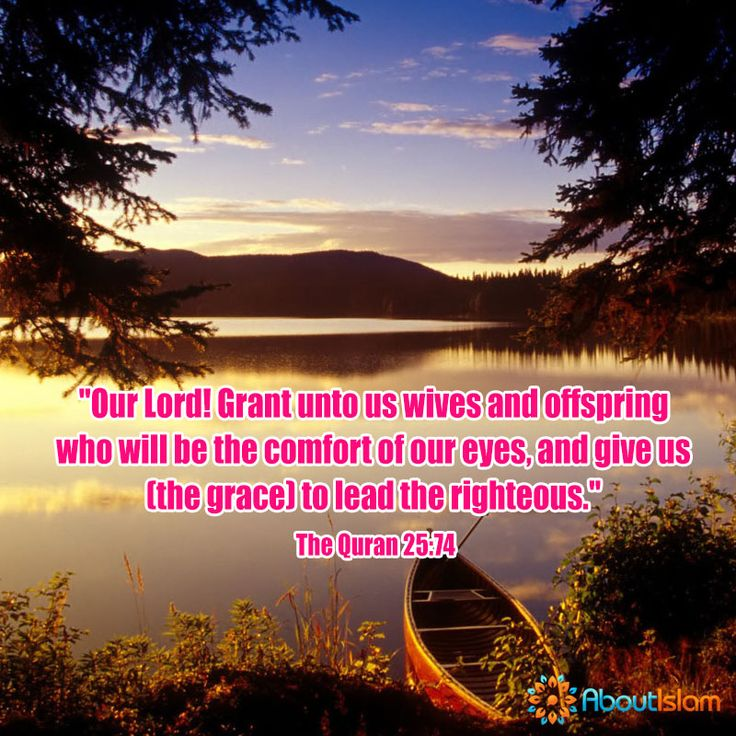 3067 best Holy Quran images on Pinterest | Islamic quotes, Quran ...