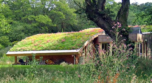 green roof-housing, roof styles