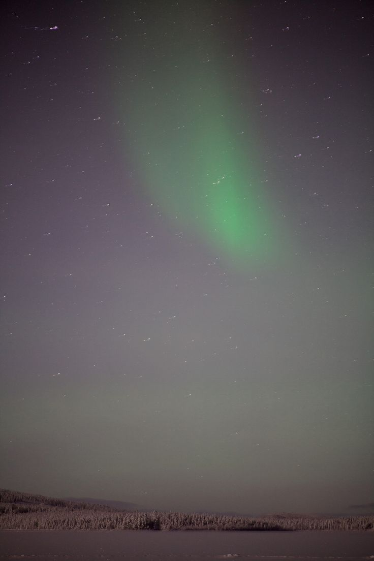 Aurora Borealis over Svergoträsk, just outside Sorsele in Swedish Lapland. #northernlights #aurora
