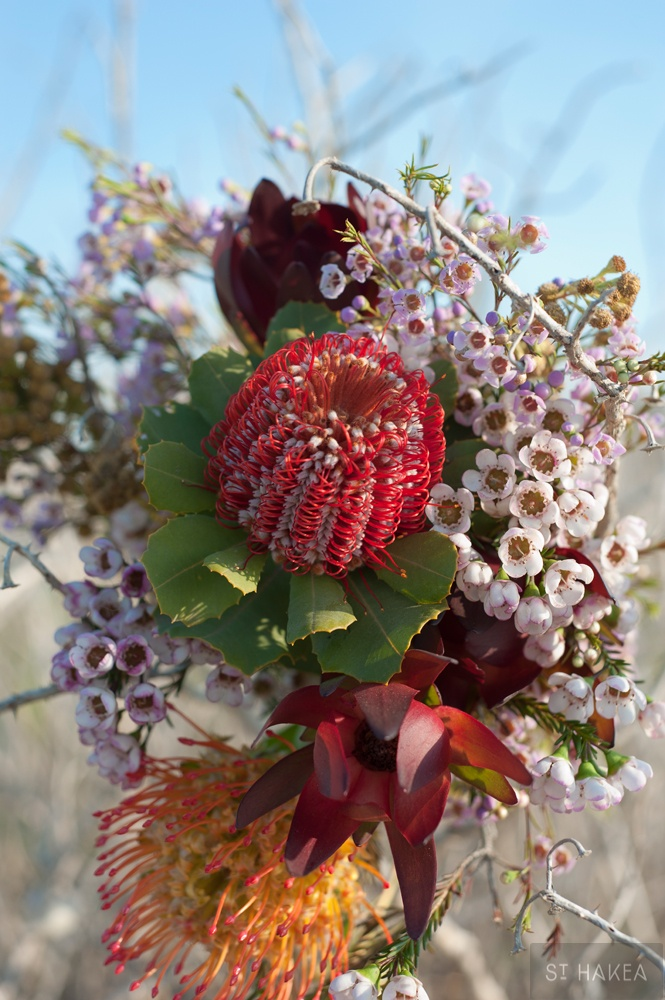 Styled by St. Hakea  www.sthakea.com