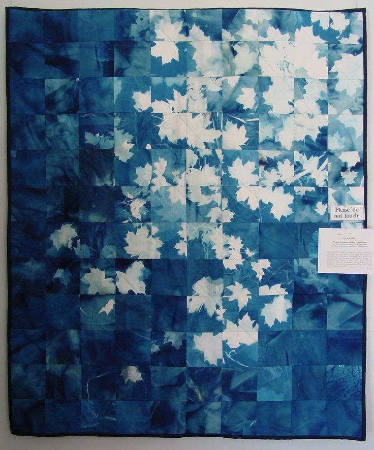 Blanket, Cyanotype. Anyone know the artist here??