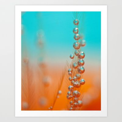 #macro #drops #feather  Happy  Art Print by Marisa M. Johnson  -