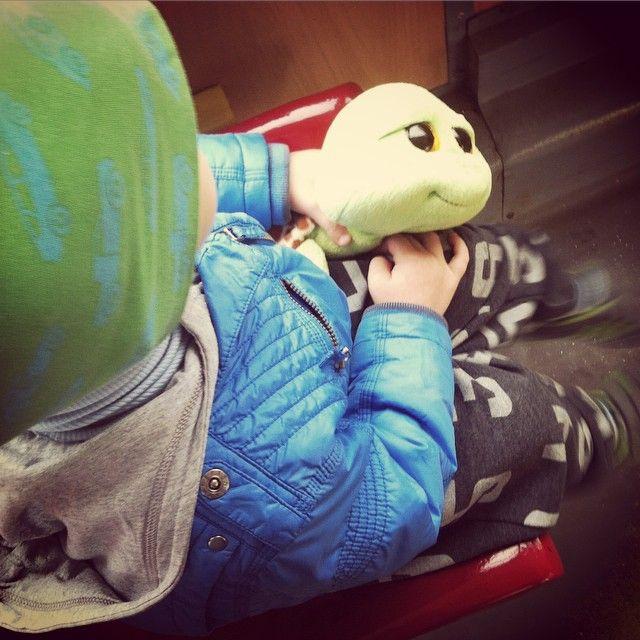 Dziś w przedszkolu Dzień Zwierząt! Zabraliśmy pluszaka! #dzieńzwierząt #żółw #pluszak #przedszkolak #przedszkole #zwierzęta #jedziemy