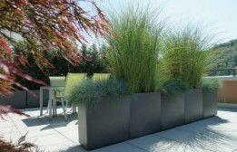 Die unterschiedlichen Gräser trennen Lounge-  und Essbereich in zwei verschiedene Terrassenräume.