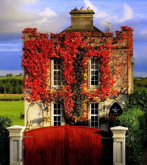 A little country house wearing specs :)  Devonshire, England    Jenkinstone House by Edward Dullard Photography. Kilkenny, Ireland. wb102