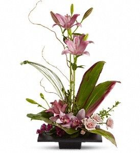 Send Imagination Blooms with Cymbidium Orchids T256-1A in Houston TX.