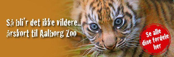 Dyrebare oplevelser i Jyllands største dyrepark | Aalborg Zoo