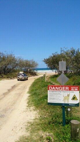 Main road to 75 mile beach.