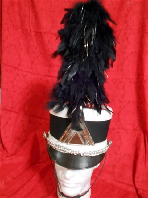 Black and silver Hat Plumes $10.00