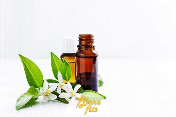 تعرف علي فوائد ماء الزهر والفرق بين ماء الورد وماء الزهر Brown Glass Bottles Neroli Neroli Essential Oil