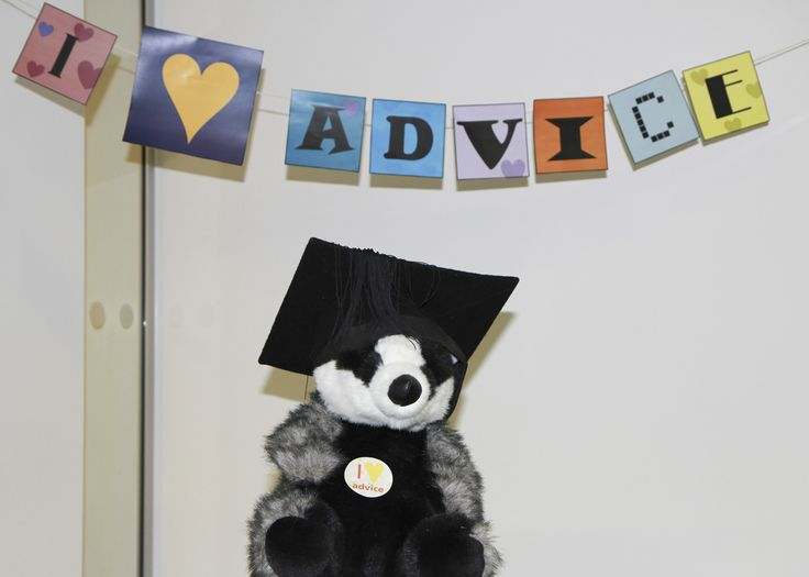Advice-giving badger