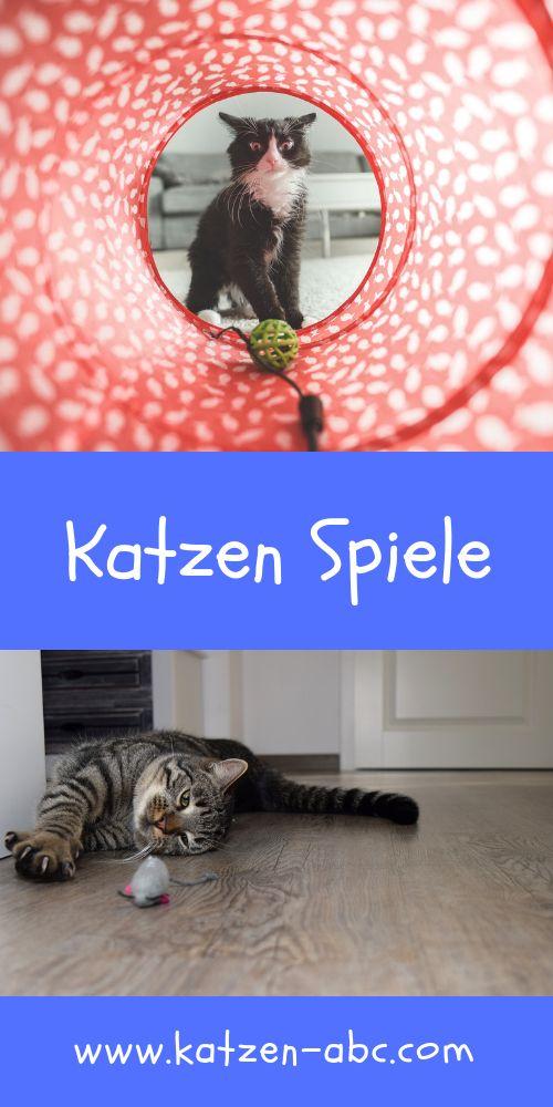 Katze Spiele Kostenlos