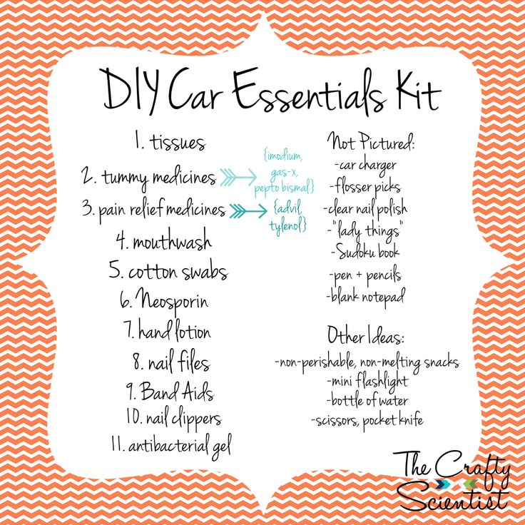 The Crafty Scientist: DIY Car Essentials Box