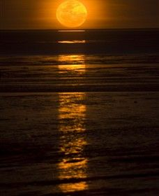 Sunset in Western Australia - staircase to the moon