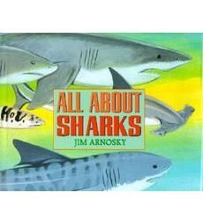 All About Sharks by Jim Arnosky | Scholastic.com