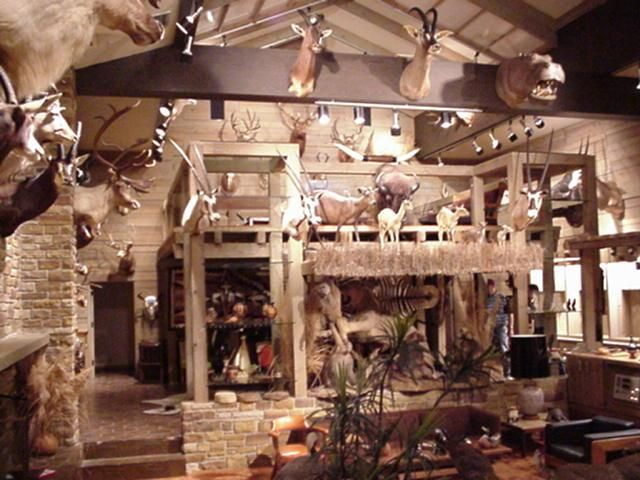 Just Found Some Pictures Of His Trophy Room Thought They Were Neat