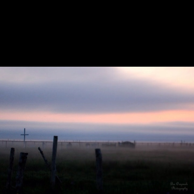 A mist settles over the catholic grave yard Bee originals photography