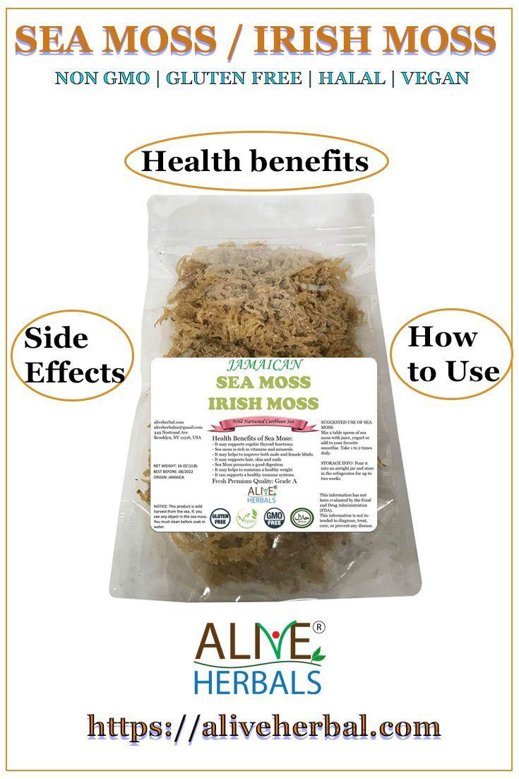 Jamaican Sea Moss Benefits Sea Moss Herbalism Healthy Smoothies